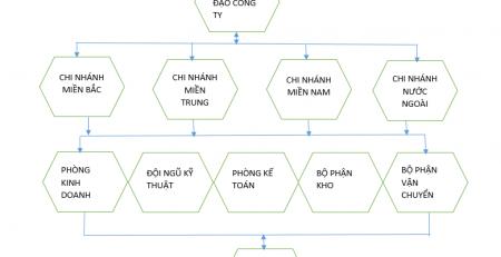 Sơ đồ tổ chức Công Ty TNHH Sirius Việt Nam